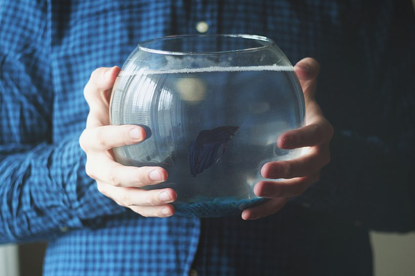 Man holding a fishbowl with a small, dark colored fish inside.