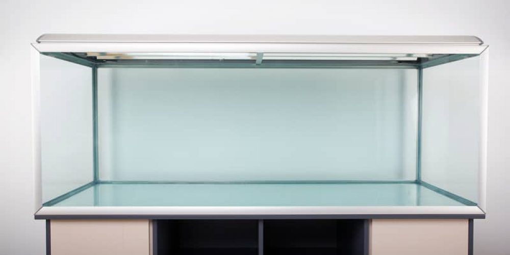 55 gallon fish tank on white background